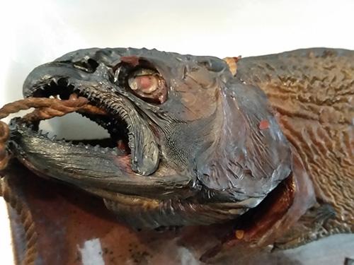 山女魚燻製4.jpg