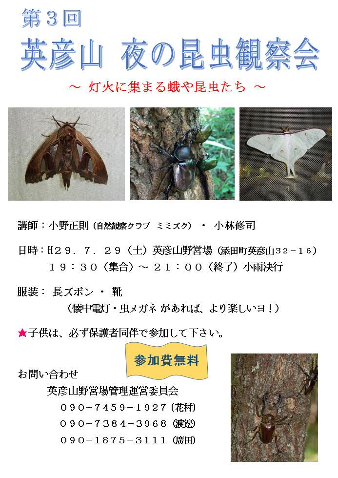 第3回 英彦山 夜の昆虫観察会.jpg